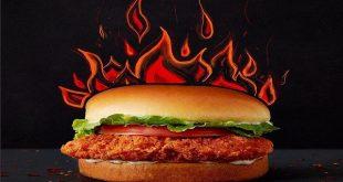 ساندویچ مرغ سوخاری تند