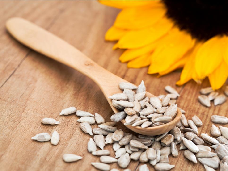 تقویت سیستم ایمنی و دانه آفتابگردان