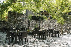 رستوران شاخه نبات گل سرسبد فشم